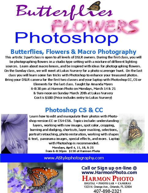 ButterfliesFlowersPhotosopMarch2016
