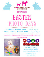 DPEasterPhotos