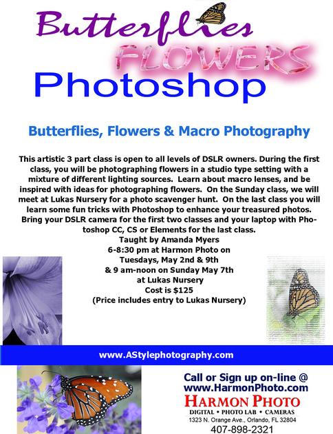 ButterfliesFlowersPhotosopMay2017