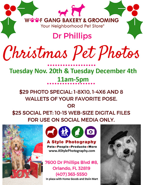 ChristmasPetPhotos2018