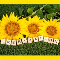 Sunflower-Quotes-